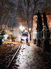 Winter (efpiem72) Tags: italy italia rome roma