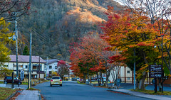 Small town at autumn near Lake Towada (phuong.sg@gmail.com) Tags: attraction autumn background beautiful branch bright colorful cottage country countryside destination fall foliage forest garden house japan landscape leaf leaves light maple nagano nature oirase park red resort rural scenery scenic season street sunlight tourism tourist towada town tranquil travel trees vacation view villa village wooden woodland yellow