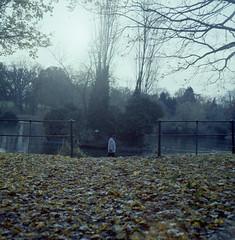 The winter long (DH73.) Tags: northampton abington park winter late autumn mamiya c220 80mm f28 lomography 100