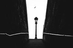 Paris (tomabenz) Tags: noiretblanc sony a7riv bnw streetshot mono mitakon speedmaster 50mm a7 urban monochrome bw urbanexplorer paris streetview black white europe street photography noir blanc mitakonspeedmaster50mm blackandwhite sonya7riv sonya7 streetphotography
