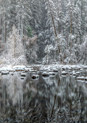 Tree Reflections and Snow Pillows, Merced River (optimalfocusphotography) Tags: usa landscape winter yosemitenationalpark nationalpark reflections yosemitenp snow mercedriver trees yosemite river water northerncalifornia california reflection nature sierranevada