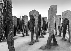 Agora, South Loop (rjseg1) Tags: sculpture agora chicago legs feet abakanowicz