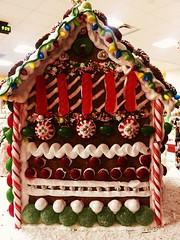 Sweet Gingerbread House (Mr. Happy Face - Peace :)) Tags: shc christmas hospital gingerbread
