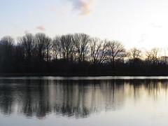 an der Kiesgrube (germancute ***) Tags: nature outdoor thuringia thüringen landscape landschaft germany germancute deutschland pond tree baum