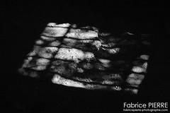 Rhône-Alpes (France) (contact@fabricepierre-photographe.com) Tags: fabricepierre photographie photography photo photographer photooftheday nature art photographe nikon nikond nikonphotography d bnw noiretblanc blackandwhite bw blackandwhitephotography blancoynegro rhônealpes france