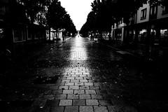 Lightway (Ricoh GR1) (stefankamert) Tags: light film analog grain analogue blackandwhite blackwhite noir shadows noiretblanc 28mm wideangle hp5 gr ilford ricoh gr1 balingen ricohgr1 stefankamert people 122019