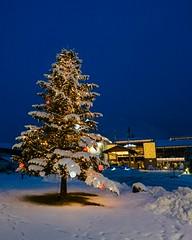 _DSF8354 (sfaingap) Tags: christmas garmisch winter