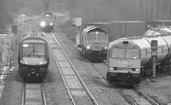 Four in One - Kingsbury Junction, Warwickshire (The Black Country Spotter) Tags: gbrf dbcargo dbschenker class60 class66 diesel locomotive 60015 66781 66783 kingsbury warwickshire lindsey oilrefinery oilsidings birchcoppice felixstowenorth scunthorpe eastleigh crosscountry trains class170 170115 birmingham nottingham trainspotting uk freight multipleunit networkrail britishrailways