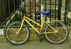 I Want To Ride Your Bicycle (Anthony D Barraclough) Tags: cambridge street bicycle yellow parked