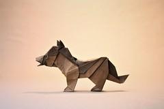 German Shepherd - Oriol Esteve (pierreyvesgallard) Tags: shepherd oriol esteve dog puppy animal papercraft paper german origami
