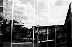 (pollution lumière) Tags: pentax k1000 kodaktrix400 smcpentax2828 blackwhitefilm blackwhite bwfp blancoynegro blancetnoir blackandwhitefilm doubleexposure mybackyard