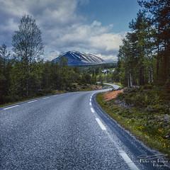 Norway 1994 (PvRFotografie) Tags: nature natuur view 500cm hasselblad hasselblad500cm distagon distagon50mmtf40cf 50mm vintagelens square squareformat zeiss carlzeiss film weg road mountain