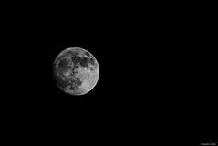 Pleine lune (Le dahu) Tags: moon lune astrophotography astronomical monochrome blackandwhite noiretblanc black white sky night nuit ciel dark darktable d610 nikon tamron 70200 200mm