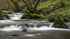 Woodland Stream (Howie Mudge LRPS BPE1*) Tags: woods woodland forest gwynedd wales cymru travel landscape nature trees river stream sony sonya7rii minoltaaf24105mmf3545