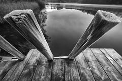 Coldness ahaed (Alexander Kraus) Tags: laowa zerod f28 12mm monochrome blackwhite bw sw schwarzeis winter lake board walk cold envelope