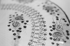 0001-20 (Kelvin P. Coleman) Tags: pentaconprakticallc 50mmf18 m42 kodakprofessionalbw400cn film 135 35mm analog analogue grain nottingham japanesefoldinghandfan sensu ornate painted decorated pattern closeup detail blackandwhite monochrome bw noiretblanc schwarzweiss blancoynegro indoor reflectaproscan10t