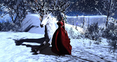 ❤ magical encounter (cometa shadow blog) Tags: seniha blowup snow jinx winter magical mesh bento post blog forest creatures deer fashion style outfit christmas catwa maitreya sl secondlife avatar