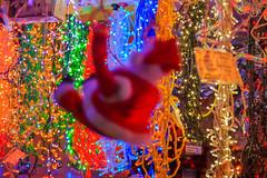 BACKGROUND PLAZA MAYOR DE MADRID NOVEMBER 2012-Madrid (FRANCISCO DE BORJA SÁNCHEZ OSSORIO) Tags: background españa exposure enfoque encuadre exposicion madrid moment christmas plazamayor color colour composition composición colourtemperature nature naturaleza nice bokeh beauty belleza timeexposure tiempodeexposición temperaturadecolor instant instante invierno winter amor arrow autumn otoño passion photo pasión primavera photostreet spring shot summer streetphoto street verano vida view detalle detalles detail details desenfoque disparo divertido delicado delicate dof depthoffield dahlia flechazo focus focuspoint foco framing love light luz life lovely