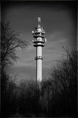 television tower (max tuguese) Tags: black white blanc noir schwarz weis bianco nero blanco negro noiretblanc monochrome flickr explore maxtuguese debrecen tower photographer outdoor