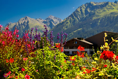 Flowers in Klosters (echumachenco) Tags: mountain mountains alps outdoor landscape house building chalet sky blue august summer flower red green klosters graubünden grischun grigioni grisons switzerland schweiz suisse svizzera svizra suiza nikond3100 purple