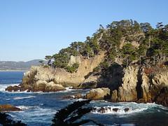Carmel:  Point Lobos State Natural Reserve (harry_nl) Tags: usa 2019 california carmel pointlobos statenaturalreserve