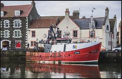 LH546 Progress DSC_4392 (dark-dave) Tags: eyemouth scotland coast harbour thewhalehotel progress boat fishingboat lh546 man walking scottishborders buildings town