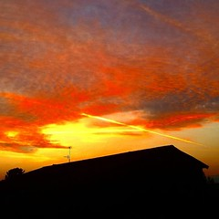 • sunset (iaia ga) Tags: sunset colors house home orange yellow tree town lines curves streetphotography plane landscape sky minimal