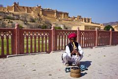 India, Amber - Hypnotizing performance in front of Amber Fort - February 2018 (Cyprien Hauser) Tags: india amber amer fort palace jaipur snake charmer pungi sapera indian cobra naja charming play music performance instrument rajasthan