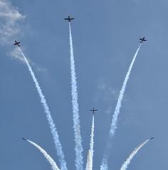 Snowbirds (6 Photography) Tags: royal canadian air force snowbirds cne airshow