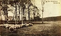 Renkum Keyenberg Ansichtkaart ca 1900 Coll Fien Bos (Historisch Genootschap Redichem) Tags: renkum keyenberg ansichtkaart ca 1900 coll fien bos