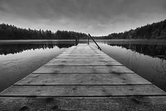 December Blues II (Alexander Kraus) Tags: laowa zerod 12mm winter melancholy tristesse lake water board walk rauhreif monochrome bw blackwhite