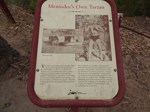 Pamamaroo on the river Darling near Menindee. Information board about the Menindee Tarzan.
