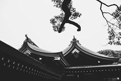 20191124 -japan_7 (Laurent_Imagery) Tags: japan tokyo asia noiretblanc noirblanc blackandwhite temple visit vacation wood roof nikon winter magazine editorial dark travel voyage