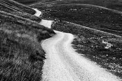 Broken road (trochford) Tags: road winding narrow gravel stone hills broken lukomir herzegovina hercegovina bosnia bosna bih bosniaandherzegovina bosnaihercegovina balkans travel travelphotography bw bnw blackandwhite blackwhite noiretblanc blancoynegro mono monochrome canon canon6d ef24105mmf4lisusm ef24105