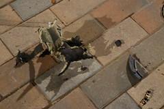 Accident in Scissortail Park (Andrew Penney Photography) Tags: downtownokc scissortailpark okc park downtown 405 night nighttime lights buildings art scissortail oklahomacity sugarplumpromenade damngirl fridaythe13th firehydrant sidewalk cityofoklahomacity firedepartment oklahomacitypolice ems fordescape wrecked accident bricks damage inspyralcircusentertainment snowkingqueen