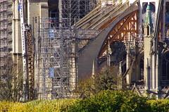 302 Paris Novembre 2019 - Notre-Dame de Paris (paspog) Tags: paris france notredame notredamedeparis novembre november 2019 cathédrale cathedral kathedral katedral