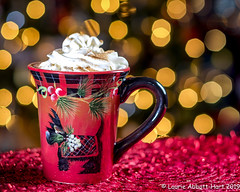 """20191213Awww Hot Cocoa 33811-Edit (Laurie2123) Tags: christmas christmas2019 christmasbokeh fujixt2 fujinon56mm laurieturnerphotography laurietakespics laurie2123 odc ourdailychallenge scottie """"off camera flash"""