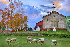 Κύριος ποιμαίνει με...εἰς τόπον χλόης                The Lord is shepherding me ... in a place of grass (Dimitil) Tags: animal animals autumn chapel christianism church civilisation clouds country countrylive countryside county d4 dramaticsky environs faith flock freegrazing grassland graze greece hellas herbage karditsa landscape legend nikond4 oldman oraltradition orthodoxchurch orthodoxy ourlady panagia pastoral pastorallife pastoralscene pastoralism pasturage patrimoine people proastio religion rural rurallife ruralscene ruralscenes sheep sky stonebuildings stonebuilt thessalicplain thessaly tradition traditionalarchitecture traditionallife trees troop village villagelife virginmarry virginmary winter greecehellas