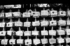 20191124 -japan_9 (Laurent_Imagery) Tags: japan tokyo asia noiretblanc noirblanc blackandwhite temple visit vacation wood roof nikon winter magazine editorial dark travel voyage