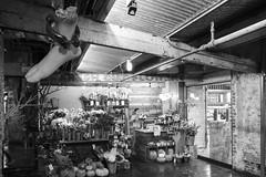 Fresh Cut (Michael Hew) Tags: halloween chelsea market