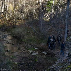 2019.12.07 La Pelegrina-93 (nature.life.street) Tags: naturaleza nature barranco rio riodulce