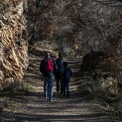 2019.12.07 La Pelegrina-55 (nature.life.street) Tags: naturaleza nature barranco rio riodulce