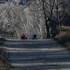 2019.12.07 La Pelegrina-51 (nature.life.street) Tags: naturaleza nature barranco rio riodulce