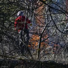 2019.12.07 La Pelegrina-32 (nature.life.street) Tags: naturaleza nature barranco rio riodulce