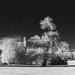Abbaye de Jumièges (Infrared)