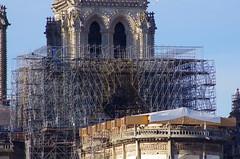 301 Paris Novembre 2019 - Notre-Dame de Paris (paspog) Tags: paris france notredame notredamedeparis novembre november 2019 cathédrale cathedral kathedral katedral
