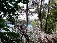 20190720_142945-2 (schoolartBYschoolboy) Tags: auvergne puydedome vulcan lake forest