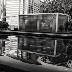 Disappearance In The Reflection (消失倒影中) (yualbert) Tags: fuji fujifilm x100 x100f photography snapshot candid street hongkong blackandwhite bw monochrome city people reflection