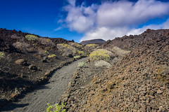 Through the Lava (PLawston) Tags: la palma canary islands spain fuencaliente lava field