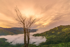 _Y2U9296-98.0716.Tà Xùa.Bắc Yên.Sơn La (hoanglongphoto) Tags: asia asian vietnam northvietnam northwestvietnam northernvietnam landscape scenery vietnamlandscape vietnamscenery taxualandscape sunrise nature natureintaxua tree sky clouds mountain flanksmountain valley hdr canon canoneos1dx tâybắc sơnla bắcyên tàxùa phongcảnh thiênnhiên bìnhminh cây câykhô thiênnhiêntàxùa bìnhminhtàxùa bầutrời mây mâytàxùa thunglũng núi sườnnúi drytrees vietnammountainouslandscape zeissdistagont2815ze longnguyenflickr longnguyen outstanding good fascinating startling staggering splendid spectacular remarkable overwhelming marvelous incredible fantastic fabulous extraordinary breathtaking awesome astounding astonishing amazing hoanglongphoto